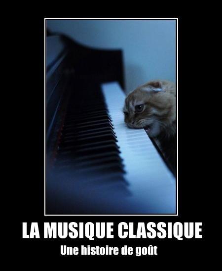 La musique classique, une histoire de goût !