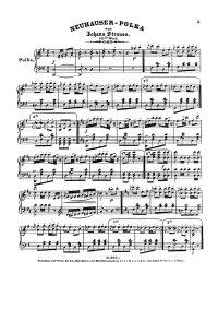 Neuhauser polka - Johann Strauss